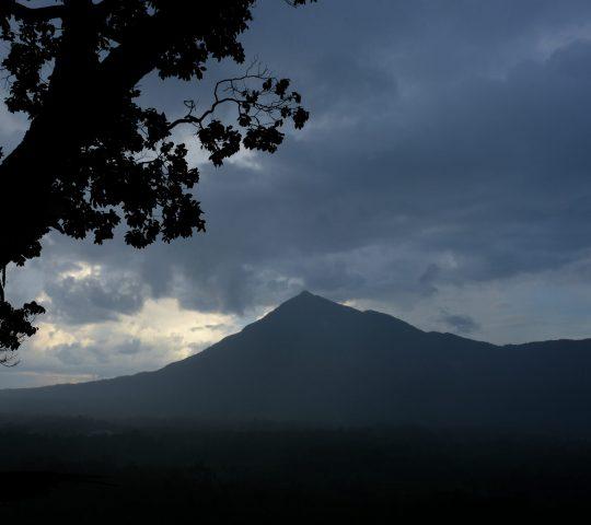Bukit Kapur