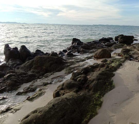 Pantai Senayang