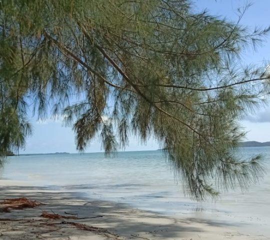 Pantai Laboh